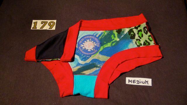 No. 179  Panties Medium