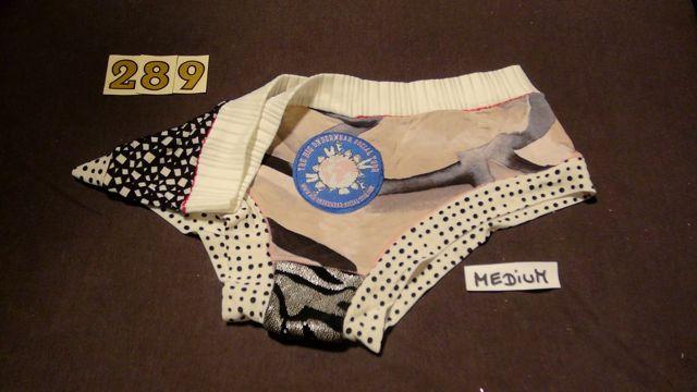 No. 289  Panties Medium